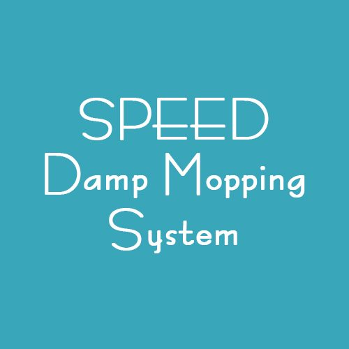 SPEED DAMP MOPPING SYSTEM